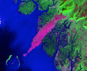 Satellite picture of the dunite of the Kaloum peninsula, Guinea, West-Africa